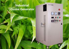 40g - 100g / hr Industrial Ozone Generator Ozonizer For Aquaculture Waste Water