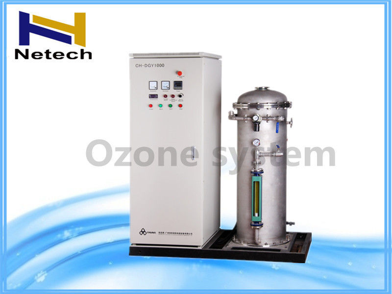 250g 500g Oxygen Source Industrial Ozone Generator Customization